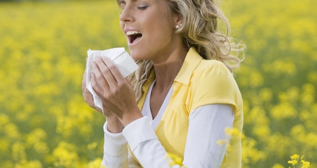 The Differences Between Cold and Allergies