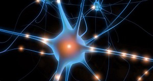 New Discovery Offers New Treatment for Epilepsy